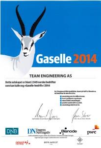 Gaselle Bedrift 2014